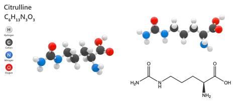 L-citrulín - súčasť eJoy