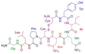vzorec oxytocínu