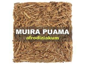 afrodiziakum Muira Puama