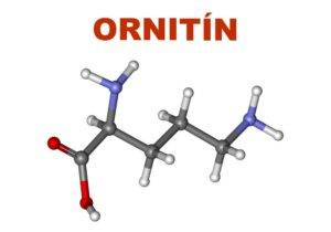 L-Ornitin