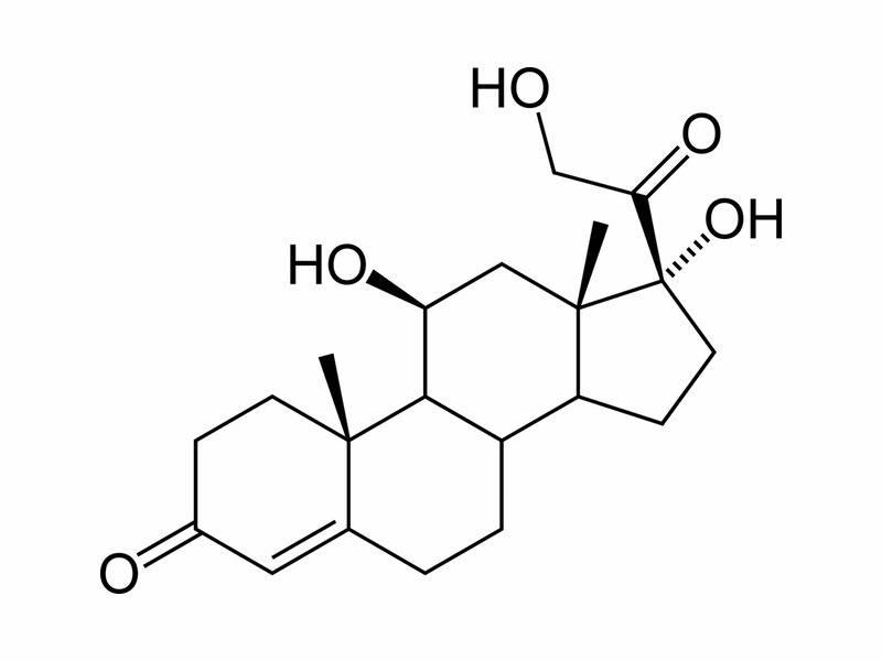 kortizol vzorec