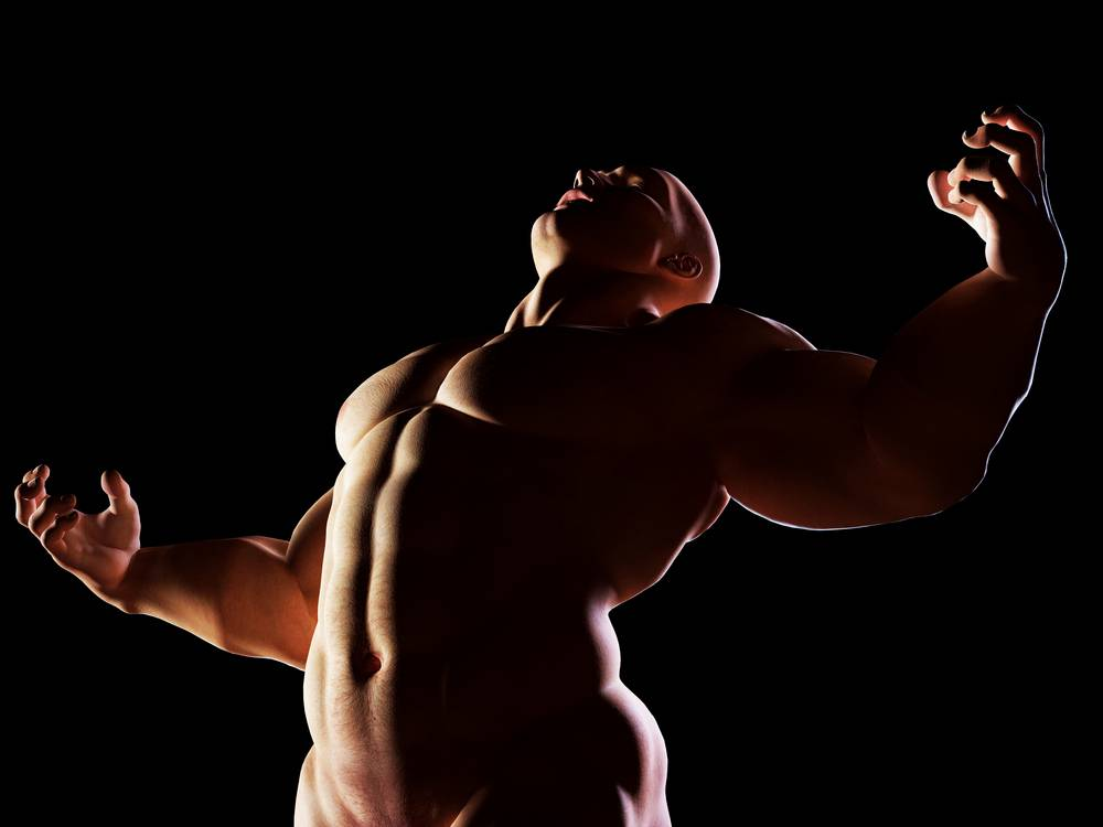 alfa samec muskulatúra