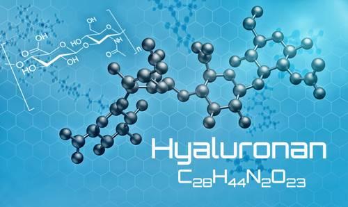 Hyaluronan vzorec